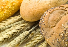 През последните години се забелязва намаляване на консумираното количество хляб – особено при жените и младите хора, които искат да изглеждат добре и се подлагат на диети. Хлябът не трябва […]